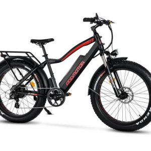 Motan M-550 P7 Electric Fat Bike
