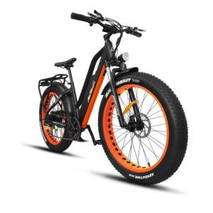 Motan M-450 P7 Electric Bike